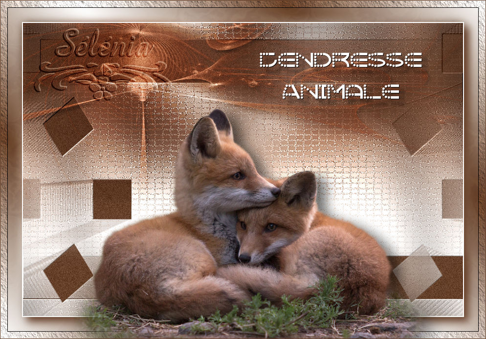 Tendresse Animale (PSP) 650276tendresseanimale