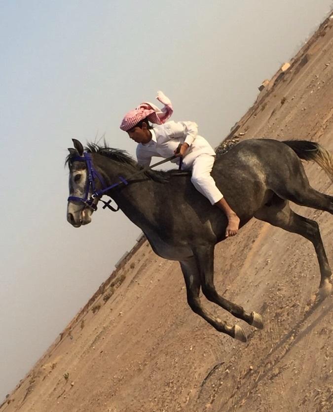 الوسم الرياض على المنتدى حراج الحيوانات 650860211