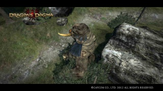 Dragons Dogma 650978CapturedcranDragonsDogma4