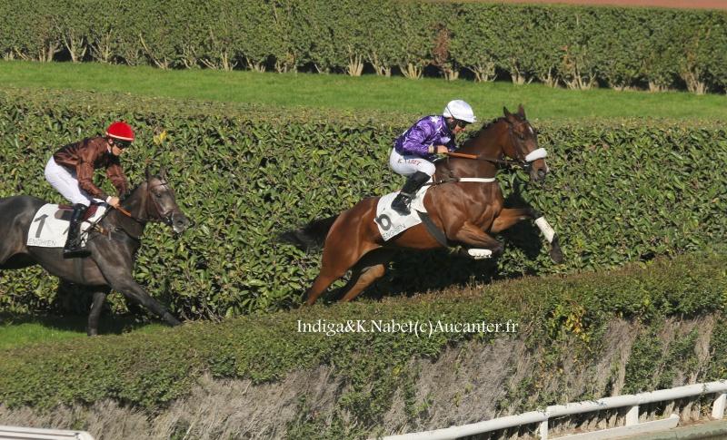 Photos Enghien 22-10-2016 Grand Steeple 6510085J6A9172
