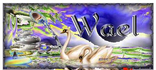 Nombres con W 653092Wael1