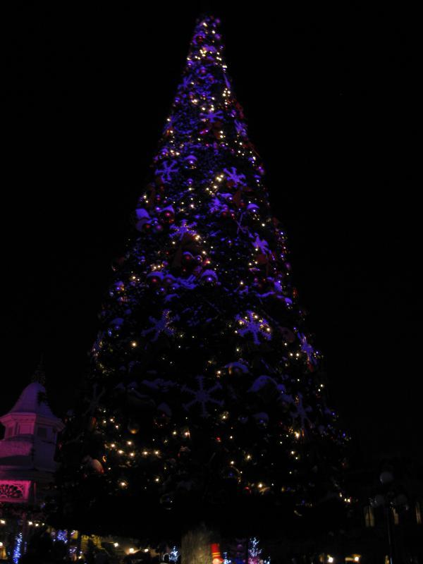 [Disneyland Paris] Disneyland Hotel - chambre Castle Club (8-10 décembre 2010) (début du TR p.9) - Page 10 667494IMG2324
