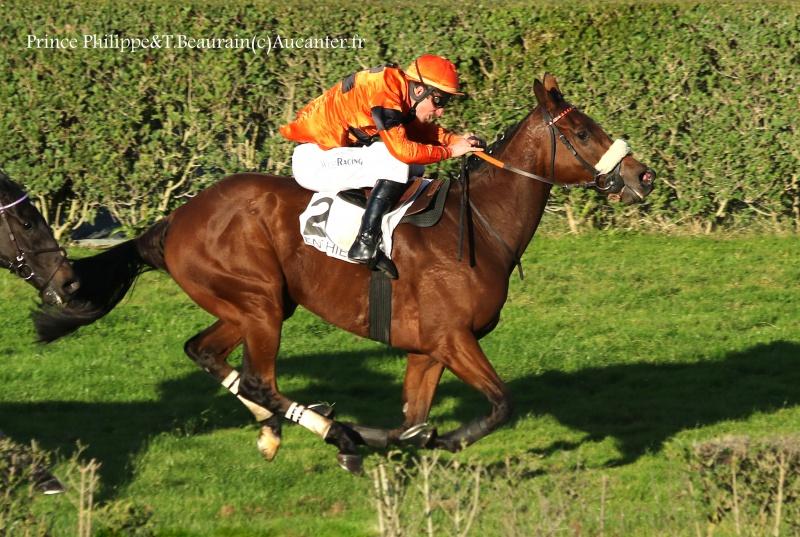 Photos Enghien 22-10-2016 Grand Steeple 6702665J6A9721