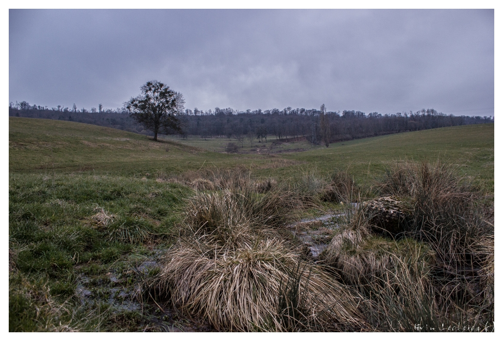 Découverte du plateau de Malzéville [Maj 02/04/2013 - Lever de soleil glacial] 671734yryg19