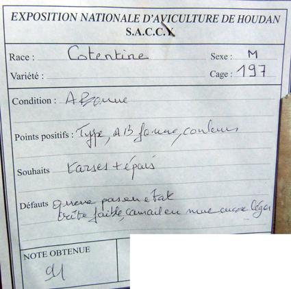 exposition d'aviculture Foire ST MATTHIEU 27 et 28 Septembre 2014 - Page 3 675148P1150776