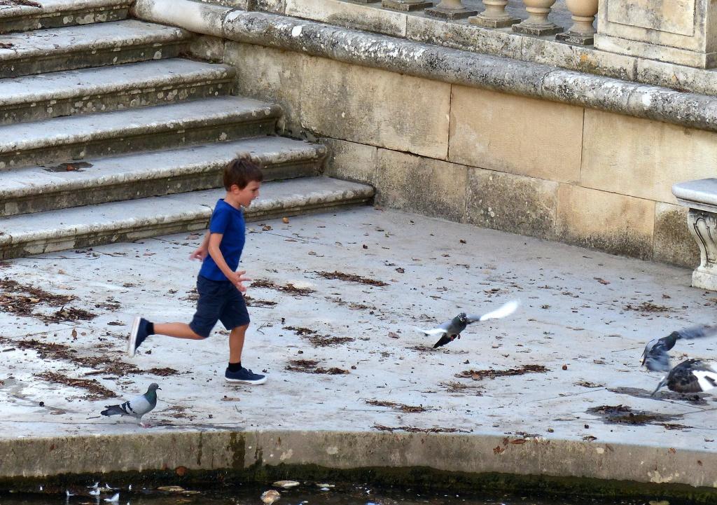 L'enfant et les pigeons 675183P1060481a