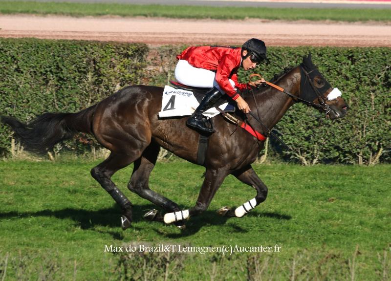 Photos Enghien 22-10-2016 Grand Steeple 6799995J6A9354