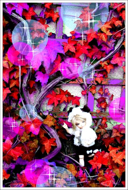 Preview Ldoll [Dolly Doll Shop] Nouveauté bas P.1 !! 68399732F