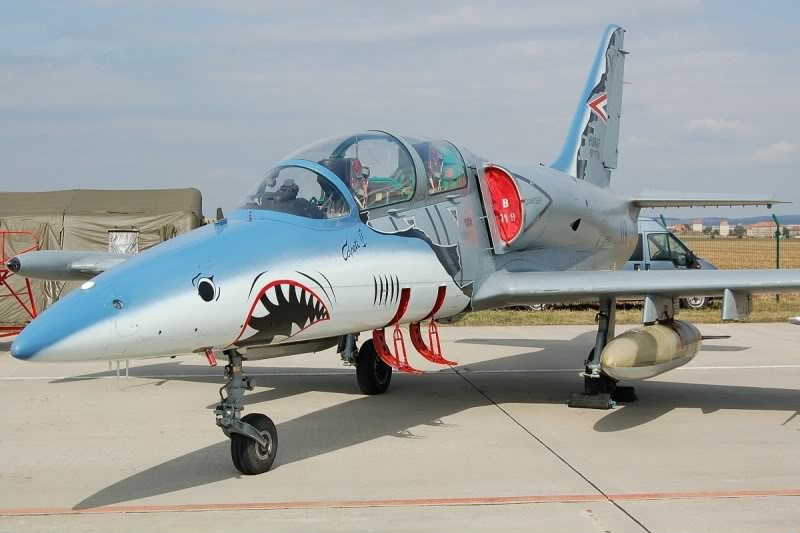 [EDUARD] L-39 ALBATROS Hungarian Sharks 1/72 691663IMG5344
