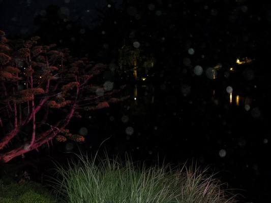 Orbs à un parc japonais 693799DSCN0993