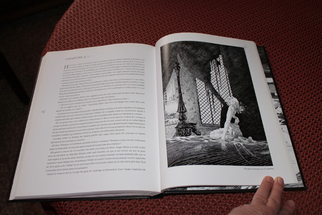 Vos plus beaux livres ! - Page 3 696314Frankenstein3