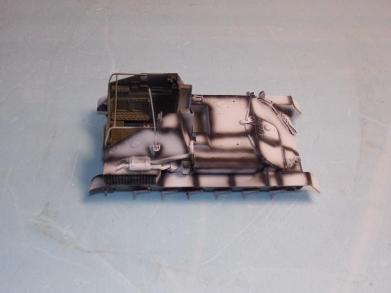 SU 76 M Tamiya et ruine Verlinden 1/35 - Page 3 701881DSCN4346