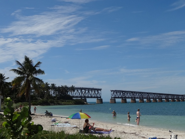 First Visit WDW/Miami/Key West halloween 2013 - Page 7 702908DSC04031