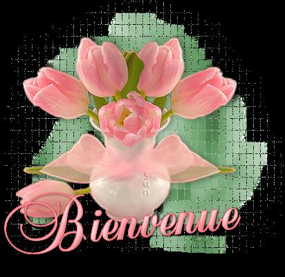 BIENVENUE TIBOUCHINA ! 70502320150117tulipesbv