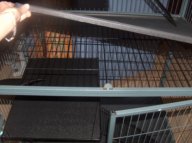 Vends cage nation 2 pour furets (à voir pour rats) 707398HPIM2691