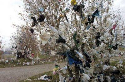 المغاربة يفضلون استعمال الأكياس البلاستيكية رغم أضرارها الصحية 708179sac