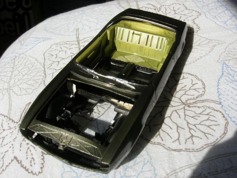Pontiac Firebird 68 cab. (Fini)  710204DSCN9086