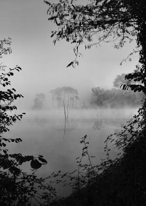 jcr paysage noir et blanc - Page 10 712496pointebourg122