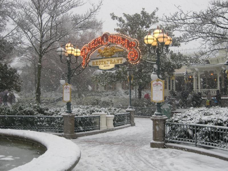 [Disneyland Paris] Disneyland Hotel - chambre Castle Club (8-10 décembre 2010) (début du TR p.9) - Page 8 715389IMG1970