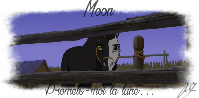 Top-site / Août - Page 3 716178moon