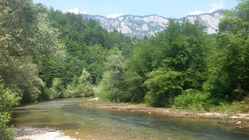 Slovénie 2017 71773710r
