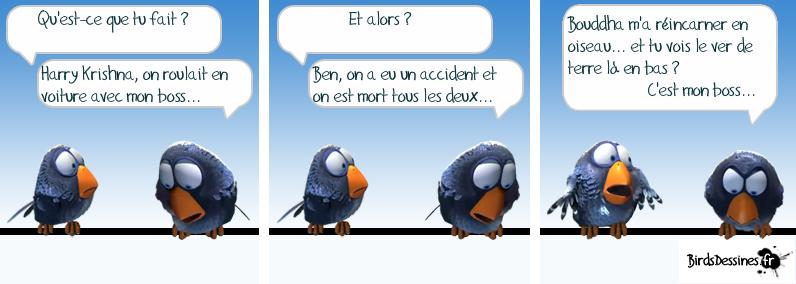 Les Birds Dessinés - Page 2 719287HarryKrishna