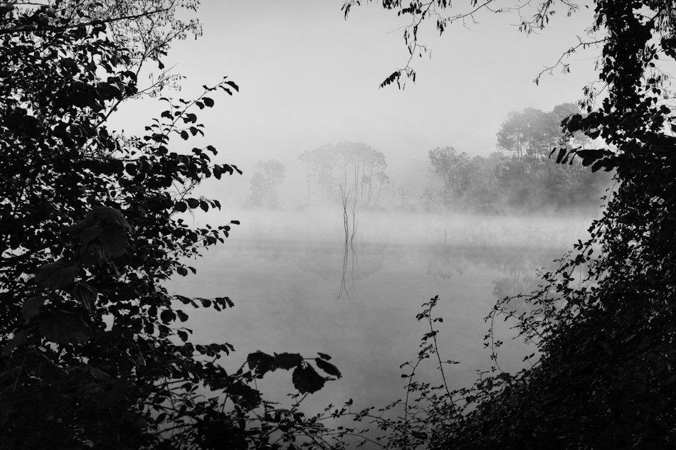 jcr paysage noir et blanc - Page 10 725230pointebourg123