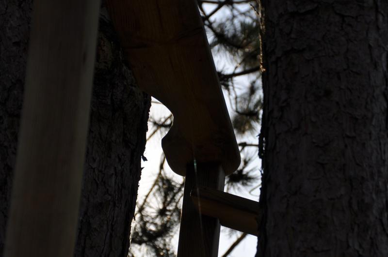 Projet de toboggant pour la cabane dans les arbres de mon fils, vos idées? - Page 3 733999Cabane21
