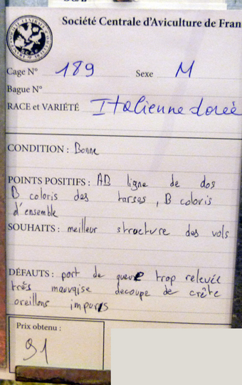 salon de l'Aviculture de Paris du 22/02/2014 au 02/03/214 - Page 4 734269P1130638