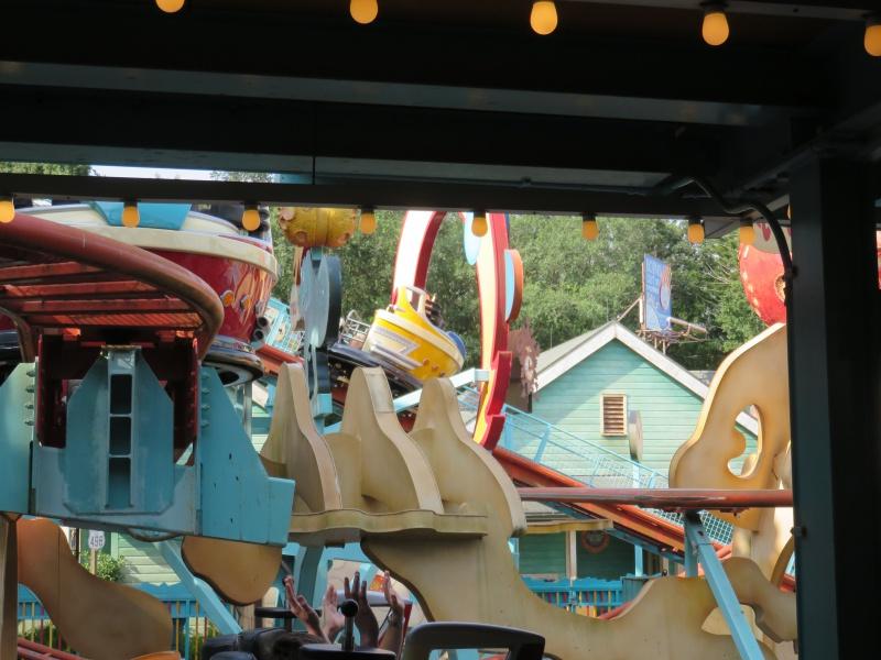 Walt Disney World + Universal Studios + Sea World + Busch Gardens Summer 2014 - Page 6 734376IMG1300
