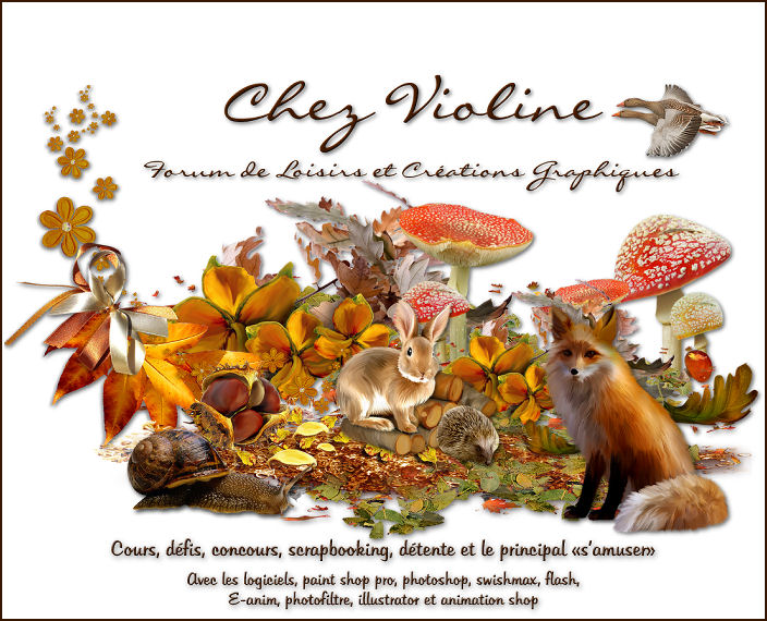 Chez Violine - Page 6 738834BanPubAutomne011014