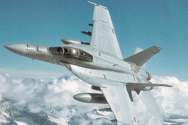 BOEING F/A-18E et F SUPER HORNET  740779BoeinfF18SuperHornetpremirephotopartiecarrireoprationnelle