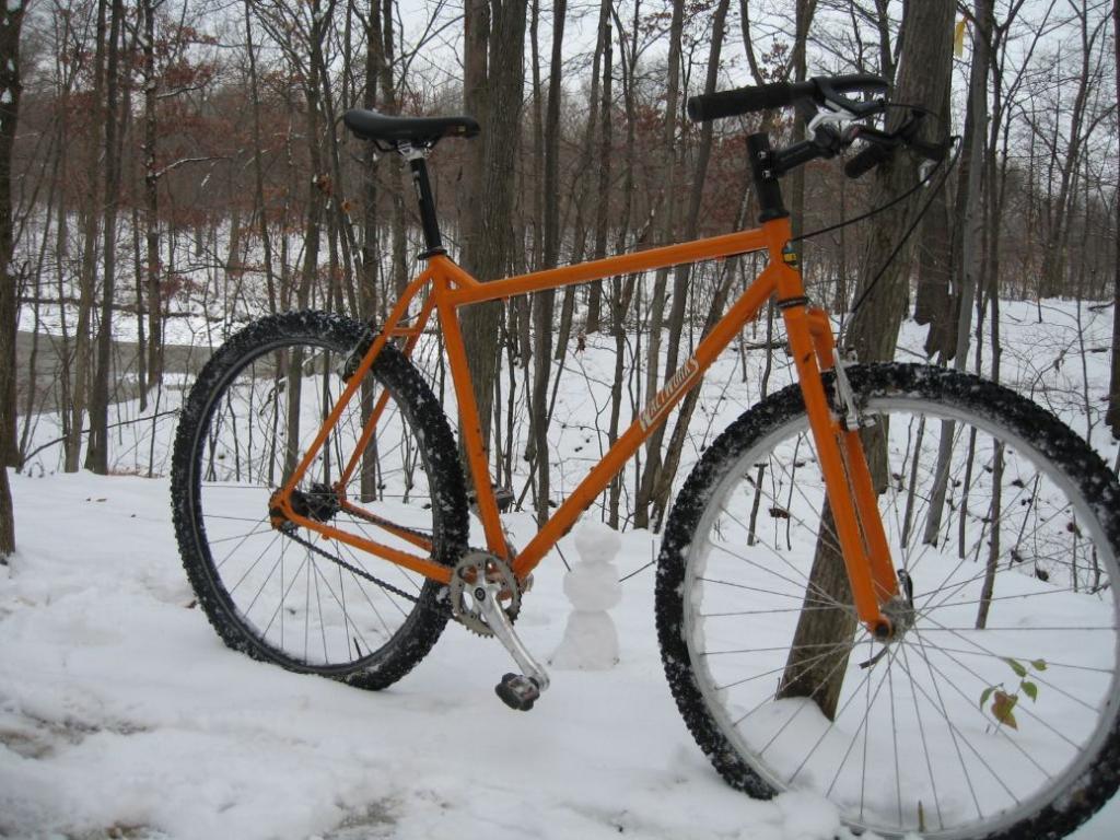 Waltworks Custom Bicycles 742396EricD