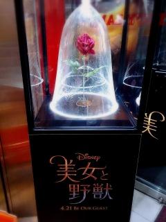 [Tokyo Disney Resort] Le Resort en général - le coin des petites infos - Page 11 743690170418142243891deco