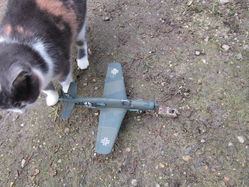 Dornier 335 A PFEIL de Tamiya au 1/48 par Pascal 94 746149IMG4146