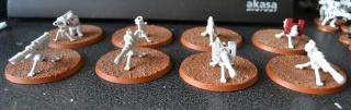 Le 251e Régiment de Garde Impériale 750479006