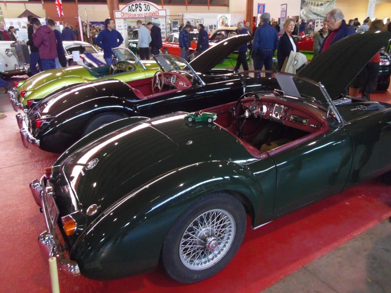 Salon Auto Moto Prestige et Collection 2016 à NÎMES 755342automotoretroNIMES2016028