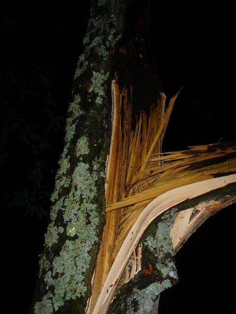 Orages monstres sur le Bordelais dans la nuit du 25 au 26/07 et du 26 au 27/07 759237P1200615