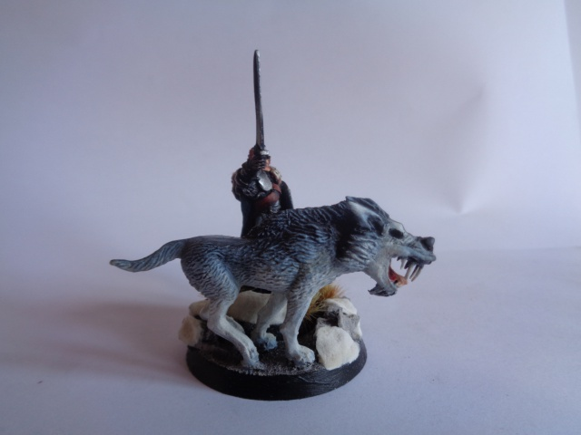 [Conversion] Figurines SdA ==> GoT : armée Stark - Page 2 760377DSC00740