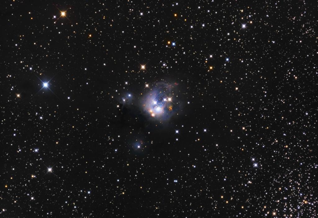 NGC7129 à l'ODK16 760601NGC7129finalejpeg