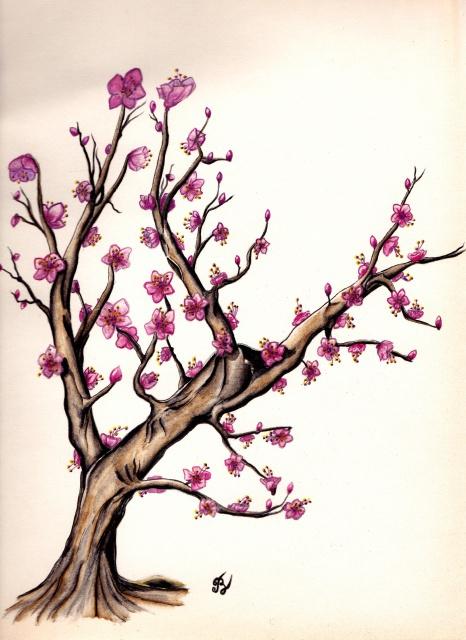 Cerisier aquarelle - Dessin arbre japonais ...