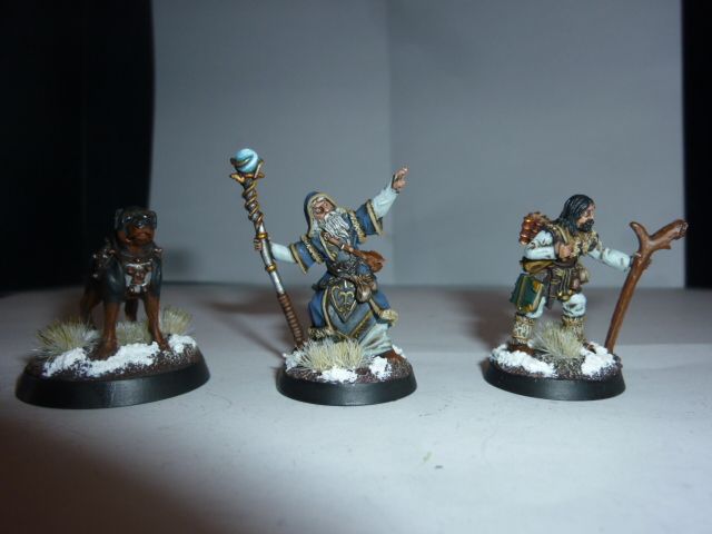 Mes figs Frostgrave  775844P1040536