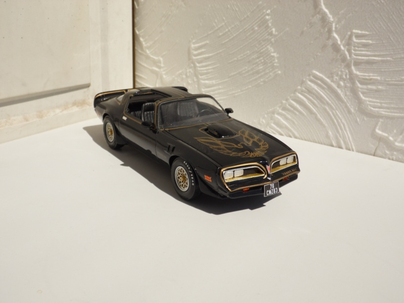Pontiac Trans-am 77. 776905SAM4932