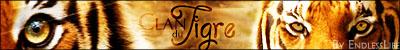 Je t'aime Nuage d'Hiver (Pv Nuage d'Hiver) 782493ClanduTigre