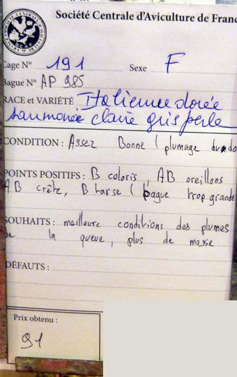 2014 - salon de l'Aviculture de Paris du 22/02/2014 au 02/03/214 - Page 4 791764P1130629