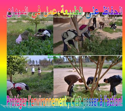البيئة L'environnement