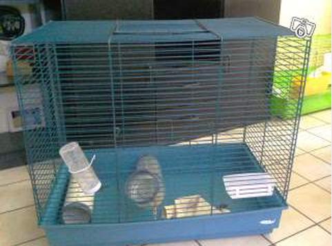 Choix de cage 800110cage2