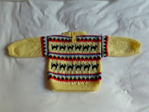 Petit pull et chaussons assortis. (Tricot) 800530P1060560w