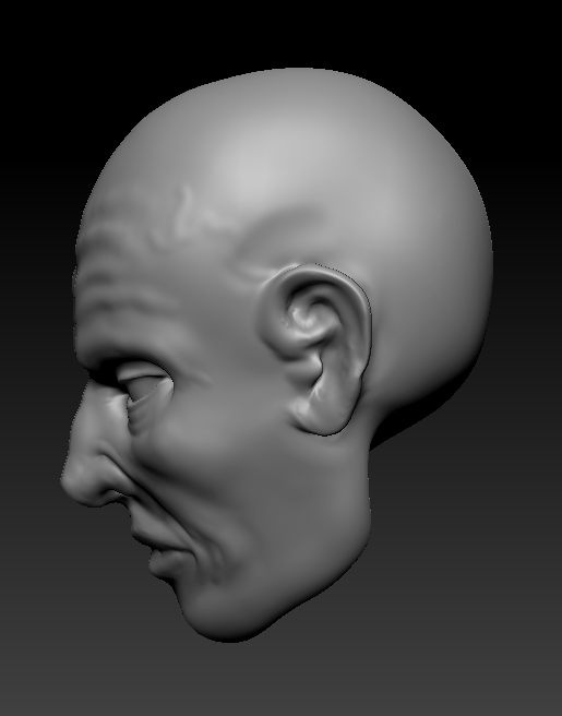 3D with Zbrush. 801238visageprofil