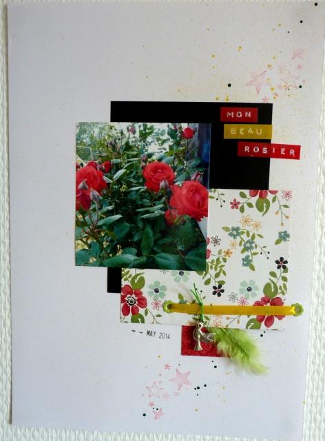 roseline - en mai -le 25 802253P1100516